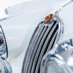 Jaguar XK140 wit-8642